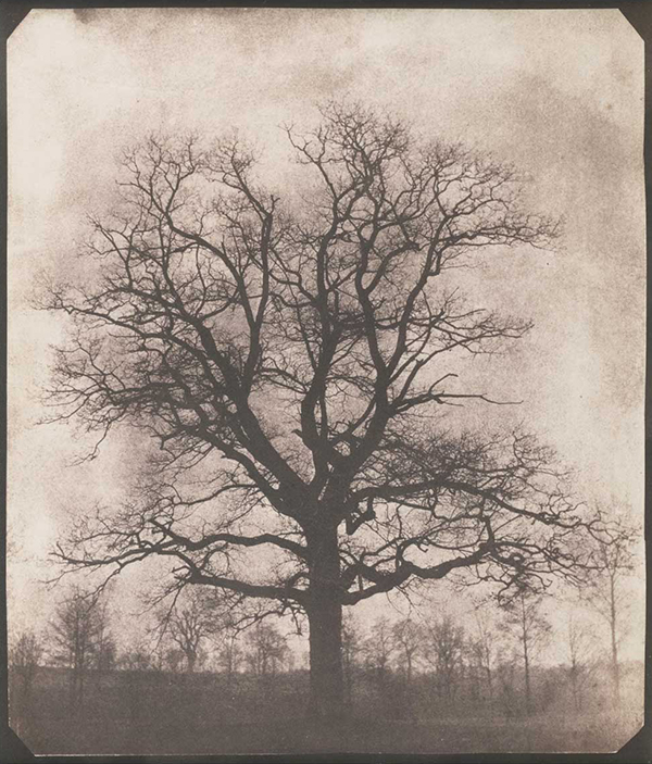 William Henry Fox Talbot, Calotype Print, c.1844